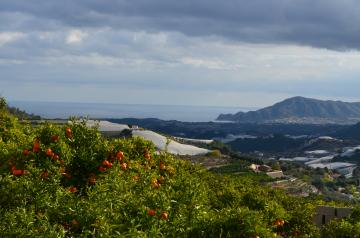 Plot with sea views in the mountains of Bolulla